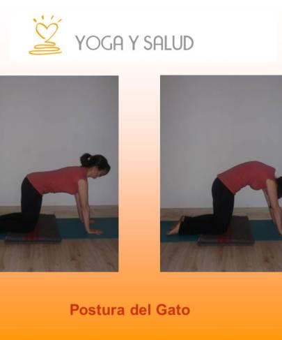 Practica yoga en casa. Postura del gato